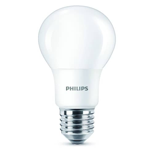 Philips Lampa 60W LED E27 matt WGD